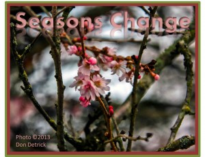 Seasons Change