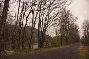 Snoqualmie Trail along Snoqualmie River Mt Si Background 3-20-15
