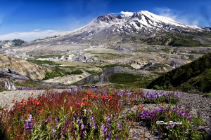 Mt St Helens 7-9-11 PS